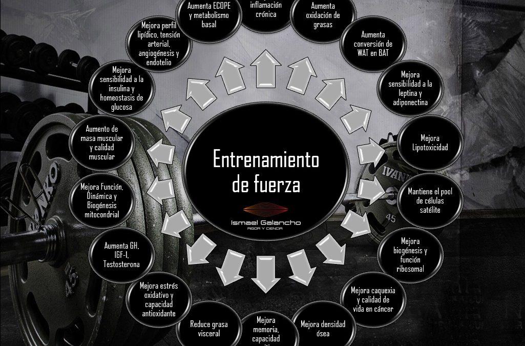 ENTRENAMIENTO DE FUERZA EN LA SALUD