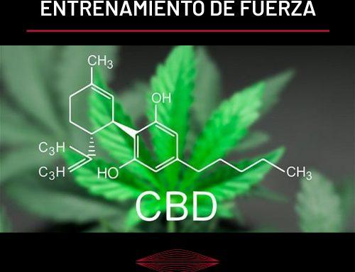 FIBROMIALGIA: CBD (Cannabidiol) Y ENTRENAMIENTO DE FUERZA