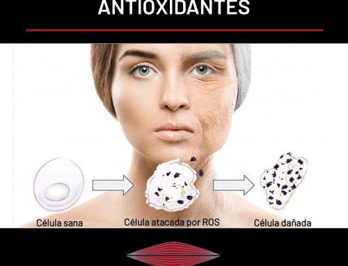 ESTRÉS OXIDATIVO Y ANTIOXIDANTES