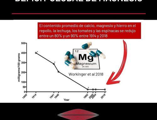 DÉFICIT GLOBAL DE MAGNESIO