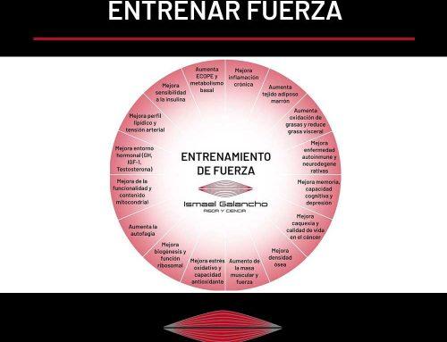 10 BENEFICIOS DEL ENTRENAMIENTO DE FUERZA PARA LA SALUD